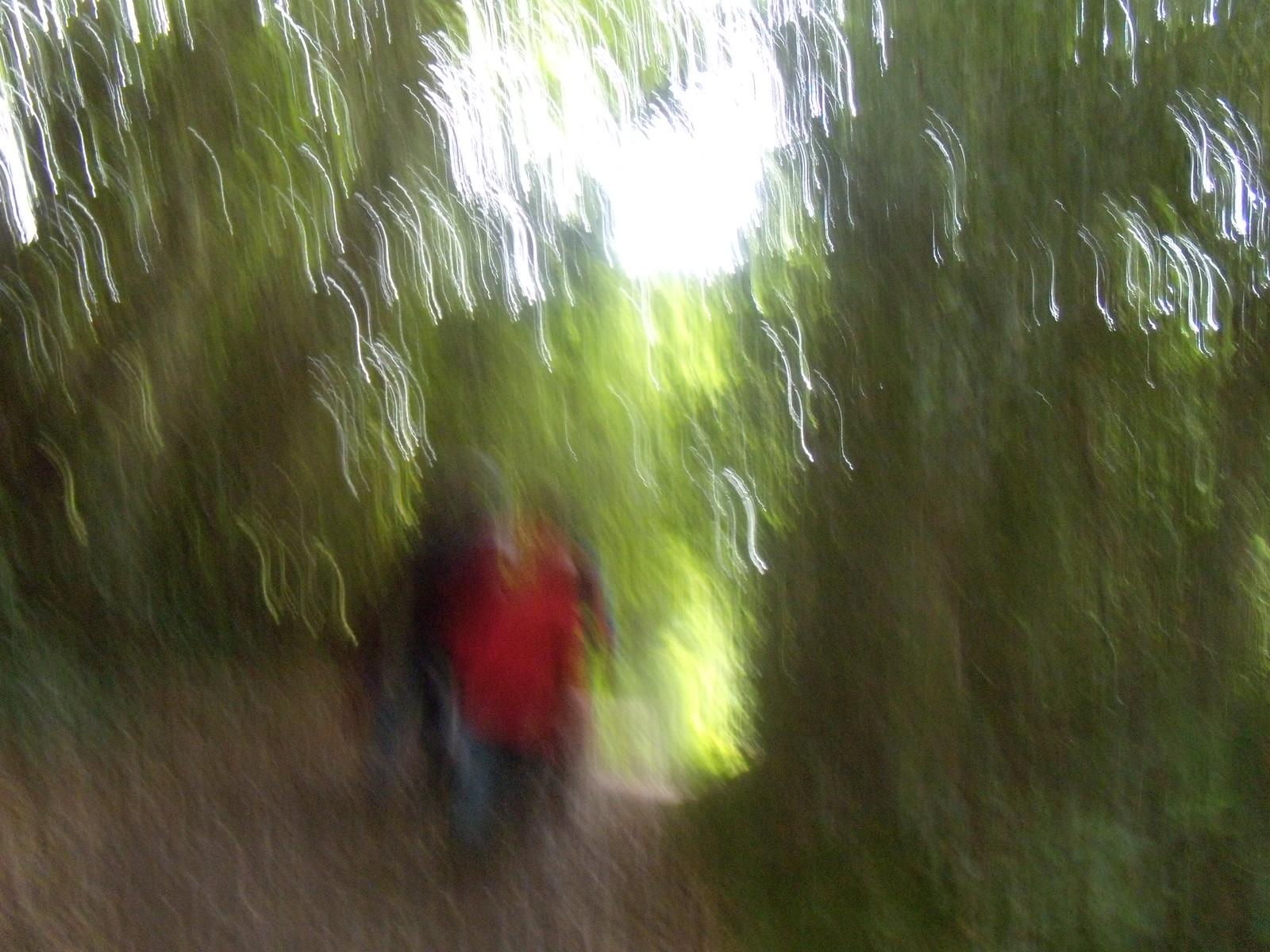 Blurred folk Ashurst to Hartfield