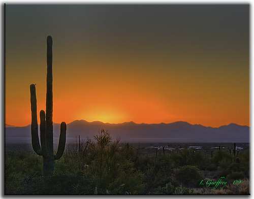 red arizona cactus southwest photoshop landscape landscapes scenery desert tucson sony scenic az oldbuildings explore hdr oldwest cs4 tucsonmountainpark photomatix hdrpool dslra350 dslr350 sonydslra350