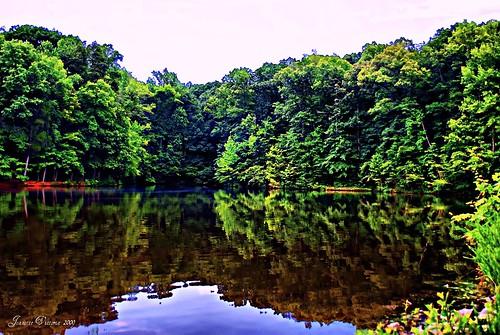 trees landscape digitalart northcarolina hdr lexingtonnc davidsoncounty finchpark sonyalphadslra200