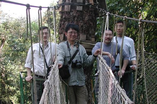 Thu, 10/29/2009 - 22:40 - Walkway in dipterocarp forest. L-R: I-Fang Sun (Taiwan), Zhu Hua (Xishuangbanna), Fangliang He (Canada) & Du Xiaojun (CAS). Credit: CTFS