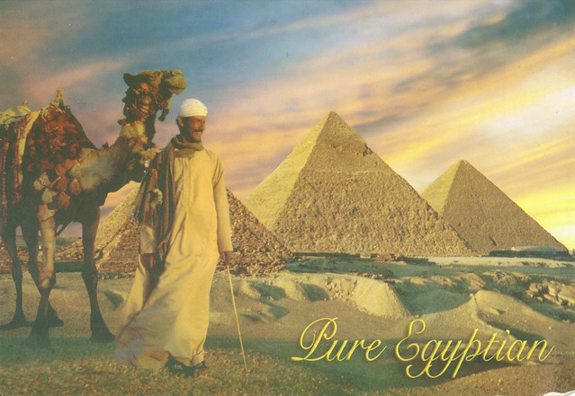 Pure Egyptian Postcard Pyramid Postcard