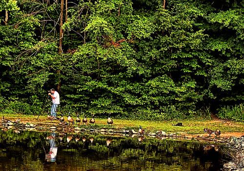nature landscape nc photographer northcarolina greese lexingtonnc finchpark legintonnorthcarolina jeanetterunyon