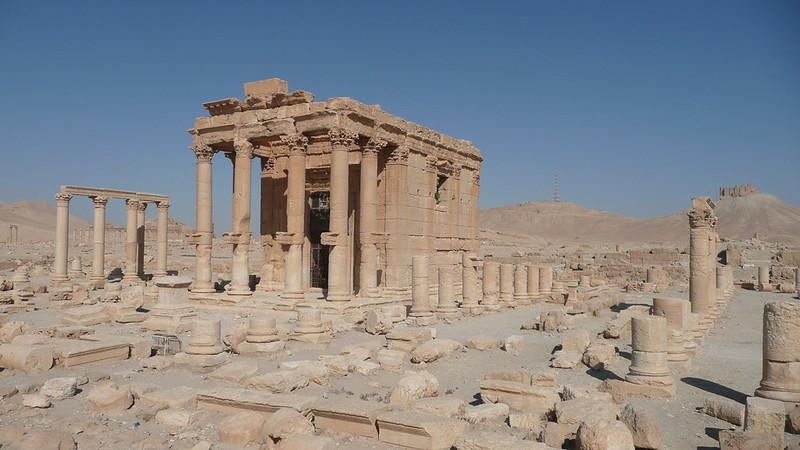 Palmyra 231