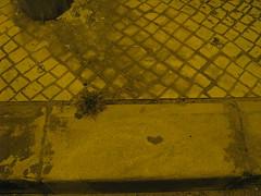 heart in sidewalk