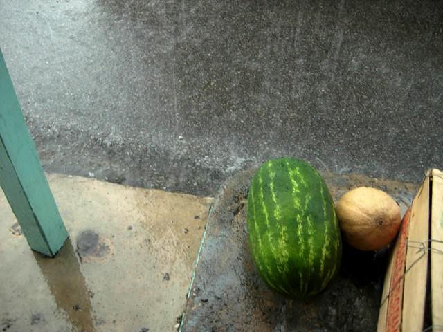 downpour, Scott's Barbecue