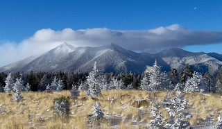 San Francisco Peaks | by Coconino National Forest