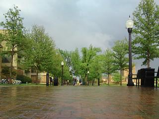 Rainy day   by bburky