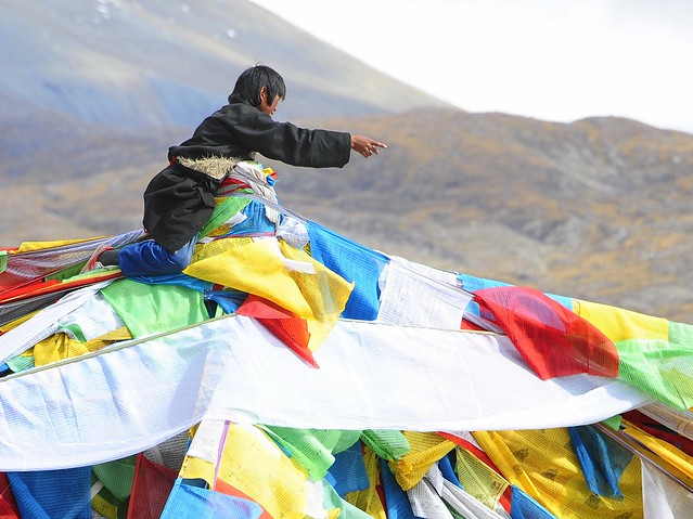 Windhorse,Tibetan is Lungta,རླུང་རྟ།