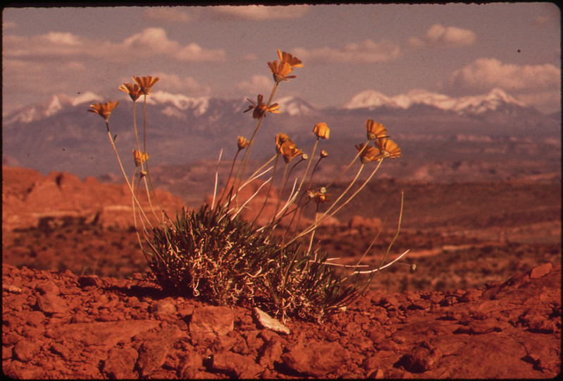 Utah  -  Near Moab, 05/1972