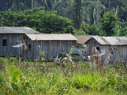 Wooden sheds in the rainforest | by Ben Sutherland