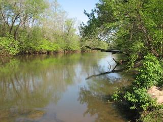 US 220 access Mayo River NC SP 9646