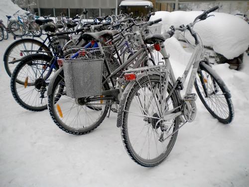 Umea winter 2010