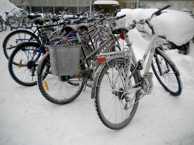 Umea winter 2010