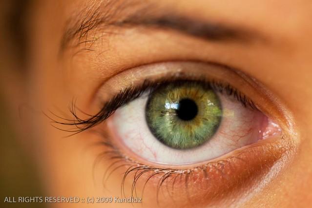 Green Eye Close-Up | Macro photo of Latin American girls ...