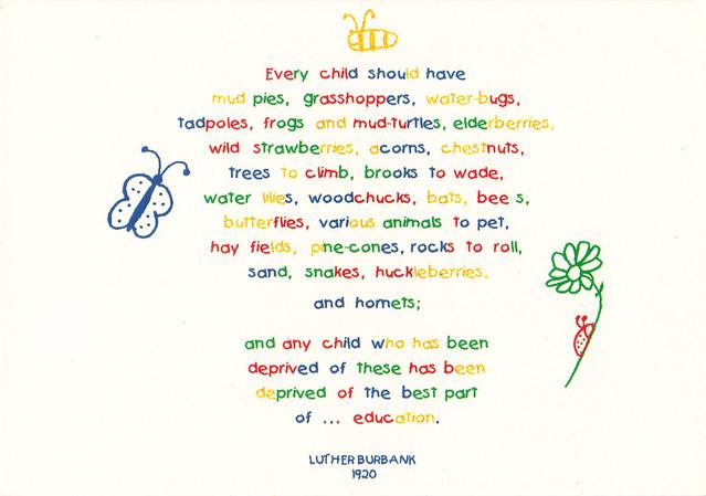 Hershey Children's Garden Illustrative Quote Postcard