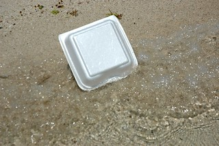 Styrofoam lunchbox washes up on a rural Mexican beach | by Wonderlane