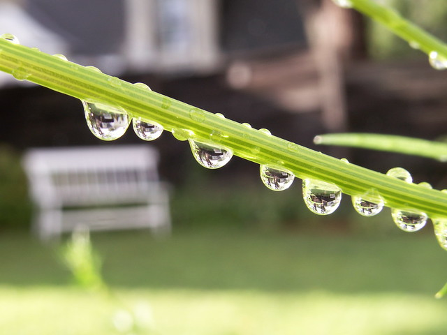 bench droplets