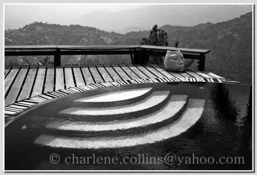 pool infinity hills jamaica strawberryhills genepearsonmask