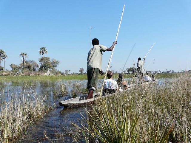 Mokoros en el Delta del Okavango (Botswana)