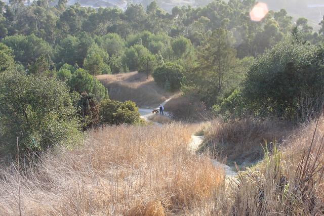 Geocaching in Kenneth Hahn Area