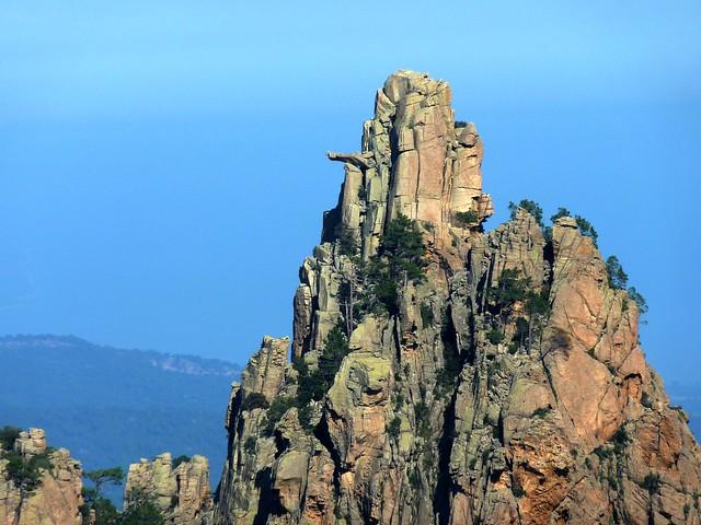 Remontée du chemin de Paliri :  depuis le GR 20 à Bocca di Monte Bracciutu, le Monte Bracciutu et son bras