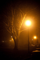 Thanksgiving Fog - Albany, NY - 09, Nov - 07 by sebastien.barre