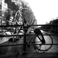 Amsterdam_120BN_6x6_01_10