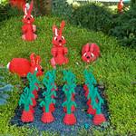 Coniglietti di duplo