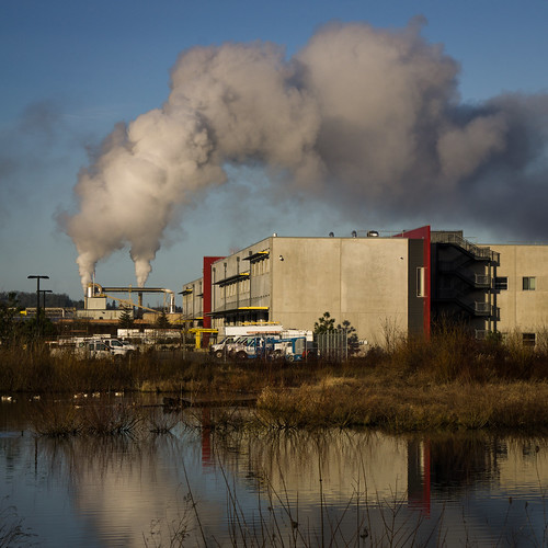 eweb eugene industrial landscapes manufacturing reflections sky smokestack steam suburbs water suburbanlandscape pnw pacificnorthwest regionalism lumber lumbermill rose smith
