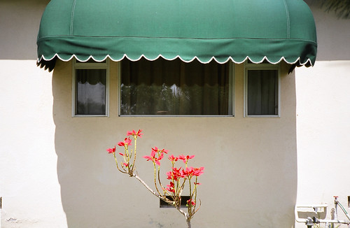 image of outdoor blind