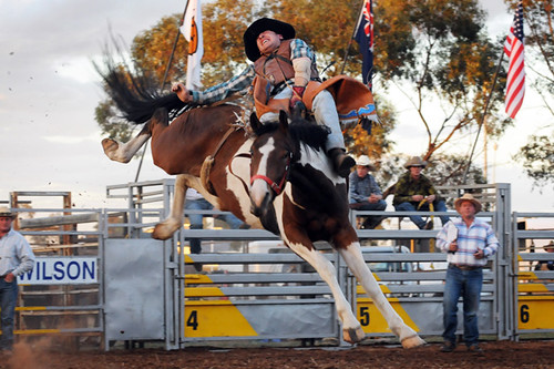 Image result for merbein rodeo