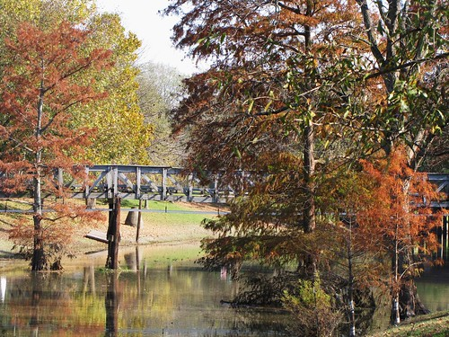 park travel bridge trees usa reflection green nature water canon mississippi leland landscapes daylight leaf view state south peaceful powershot daytime tranquil fabbow sx10is waltphotos