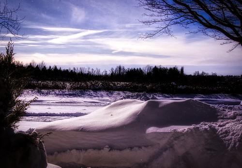 landscape winter aldergrove outdoor snow trees sky whispyclouds