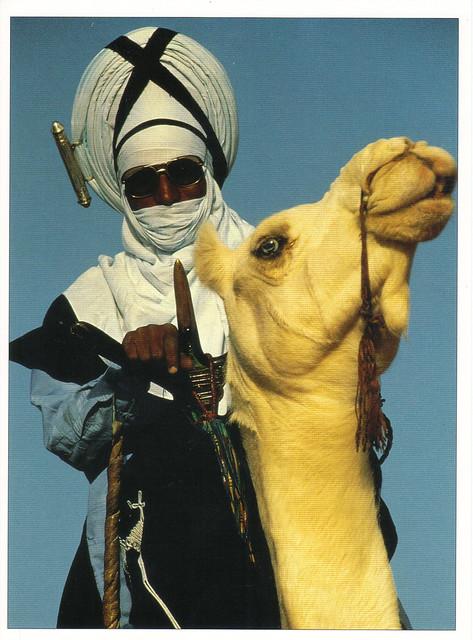Tuareg Warrior Postcard