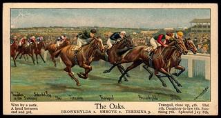 Cigarette Card - The Oaks | by cigcardpix
