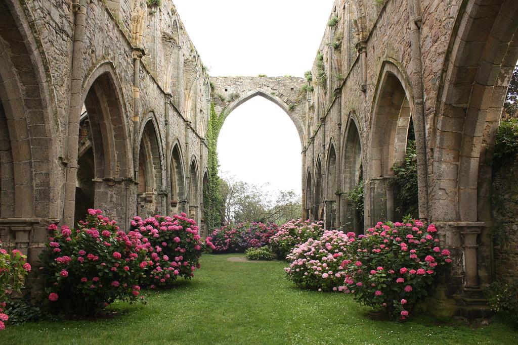 Fiori Chiesa.Chiesa Fiori E Archi Gabriele Roncoroni Flickr