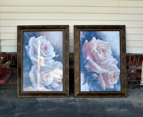 roses reflections frames paintings newhampshire posters electricity nicknacks fitzwilliam paintedroses electricpoles roseposters