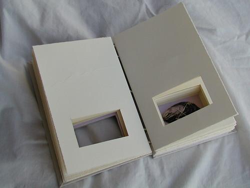 Shadow Box Journal