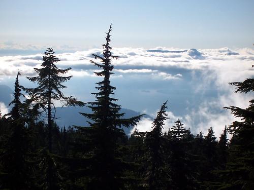 Black Mountain - the view