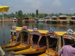 Boats lined up in Dal lake