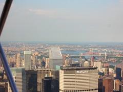 New York41