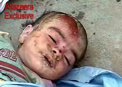 killing the terrorists?