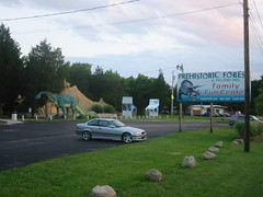 Prehistoric Forest From Tommy Boy This Is The