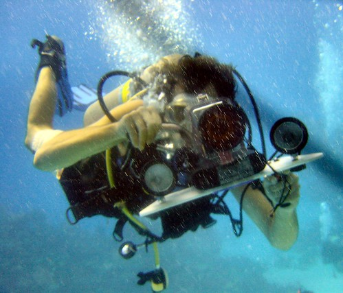 Olivier films Mark photographing him underwater   by Ruth and Dave