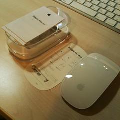 magic mouse@箱出し後 | by shlp45@yahoo.com