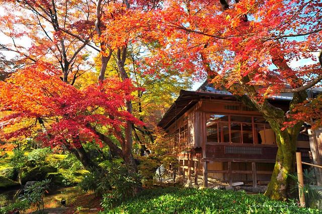 嵐山寶嚴院