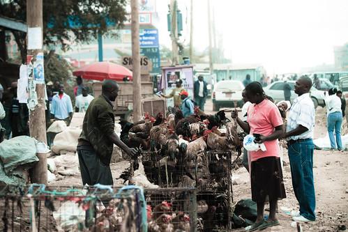 africa street chicken canon eos calle gente market kenya mercado tienda 7d compra comprando gallinas kuku puestos ambulantes kajiado keniatas kaijido