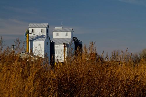 fall rural landscape tin afternoon unitedstates elevators mn amiret