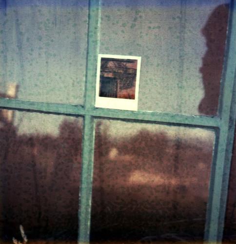 reflection film window brooklyn project landscape polaroid sx70 cottage expired sebastopol atz jeffhutton greatpolaroidgiveaway