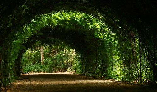 Tunnel of Love | by StephenMitchell